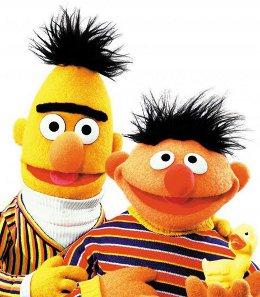 Bert - Sesame Street - Unibrow